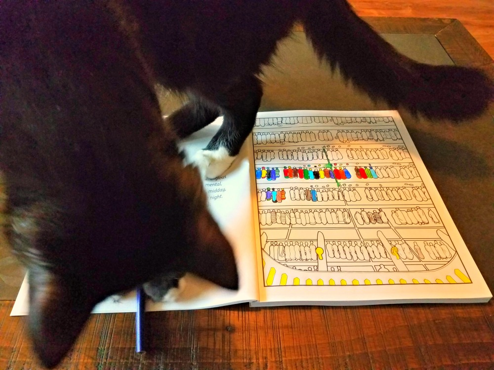 catloves the islamic adult coloring book